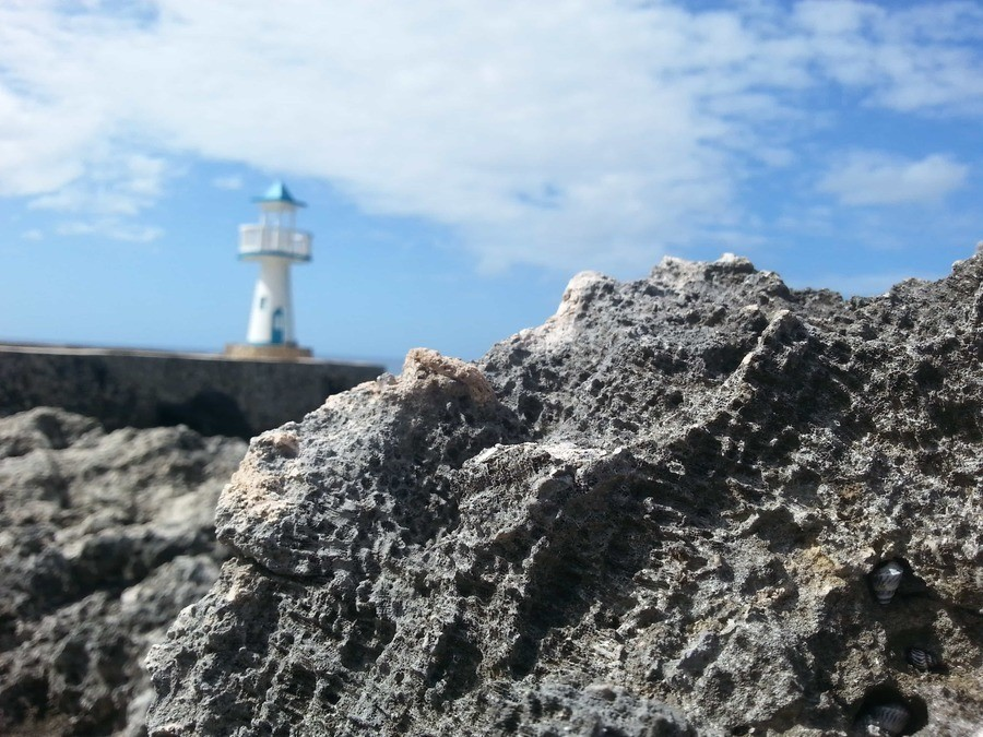 Coral in the foreground and a non-working lighthouse in the background. Negril Escape, Negril, Jamaica